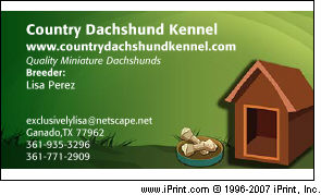Country Dachshund Kennel MINIATURE DACHSHUNDS